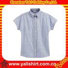 High quality plain vertical stripe short sleeve cotton office blouse women shirt model 2013