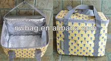 2013 Hot sale new style cooler bag promotional cooler bag
