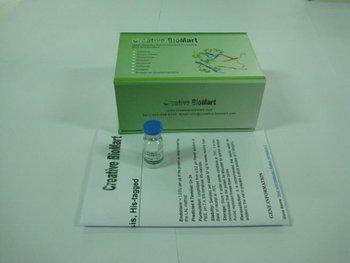 Recombinant Human Coxsackie Virus And Adenovirus Receptor, His-Fc