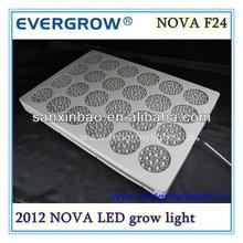 Evergrow Nova series F24 wholesale grow led light alibaba express in lighting