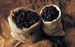 Panama Geisha Coffee Beans