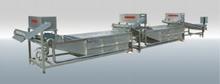 Raisin Washing Line/Processing Line