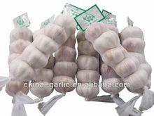2013 China Garlic/ Fresh Big Garlic Seeds ( Eu quality)