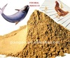 Animal Feed - tilapia Fish Meal 65% protein for sale