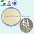 natural de ginseng americano extracto de la raíz en polvo caliente proveedor vender en estados unidos