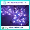 Programmable SMD5050 Pixel LED Module WS2801IC DC12V Flexible LED String