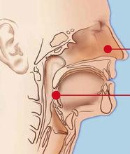 Diodo láser de bisturí para Nasal seno Polypectomy
