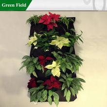 Campo verde giardino sistema verticale, soggiorno muro fioriera, esterno parete fioriere