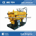 El metano honny/propano generador de gas
