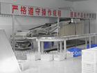 indomie noodle production line