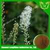 100% Natural black cohosh powder extract/cimicifuga racemosa p.e.