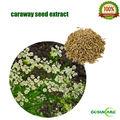 100% naturel extrait de pépins de carvi 10:1