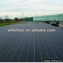 Sunshine PP Woven Agricultural Weed Mat