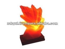 buona qualità di cristallo di sale himalayano rock lampade