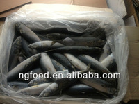 export China made frozen fish and seafood
