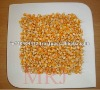 Indian Yellow Maize for animal feed