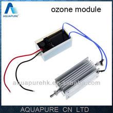 New! 12VDC 1000mg/h Corona Discharge Food Ozonizer