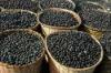 1500mg Softgels Acai Berry Weight Loss Pills