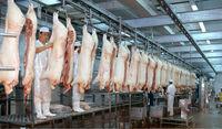 pig/swine/hog slaughterhouse equipment