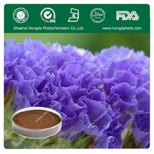 KOSHER, ISO, FDA Manufacturer Lavender Extract Powder