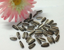 Raw Sunflower Seeds 5009 as Whole Foods