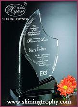 HDA2009 crystal award for achievement