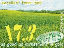 Farm Land Plot in Bulgaria - Excellent Investment