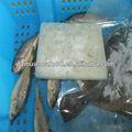 frio de qualidade e peixes de água salgada