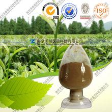 Pure Melaleuca alternifolia Extract
