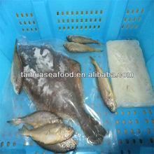 deep sea silver fish and iqf grouper fish