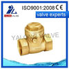 high quality of din standard check valve with best price from China manufacturer