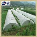china proveedor de productos para la agricultura tela tejida