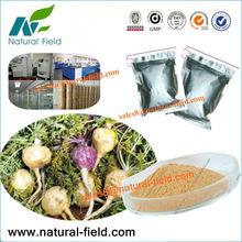 Best selling maca vital natural 1:1,4:1,10:1,20:1 in powders!