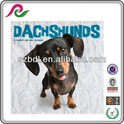 Dachshund Puppies 2014 Perpetual Wall Calendar