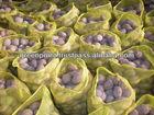 Fresh Rosetta Potato