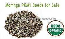 Moringa PKM1 Seeds for sale