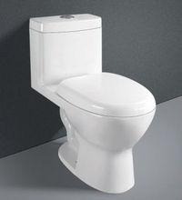 toilet s - p trap