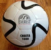 Soccer Ball Cheetah 1000