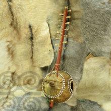 African kora,cora ,african instrument