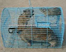 Pet cages Jx-01