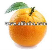 Frozen Mandarin Juice Concentrate