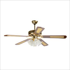 Ventilateur de plafond avec télé mande Howell