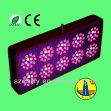 CE & RoHS Approved Super Power high intensity 600x1W/600W pro grow led light