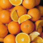 VALENCIA ORANGES AND CITRUS FRUITS FROM PHILIPPINES