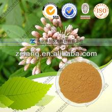 Organic Fortune Eupatorium Herb P.E~eliminate the heat