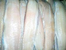 Fresh Carp Sirloin