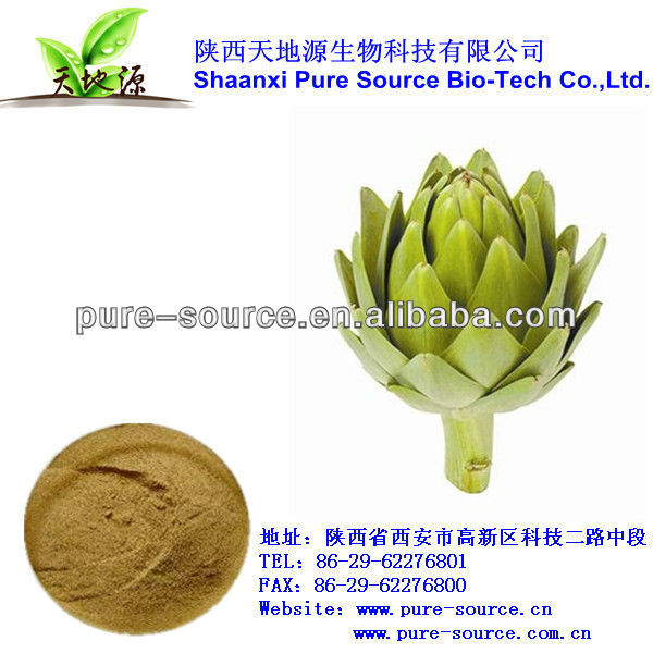 pure artichoke Extract with competitive price and qiality