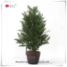 real touch plastic bonsai plant in mini decorative pots