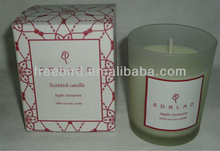 Scented Soy Candle for Christmas
