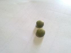 Moringa tea tablets